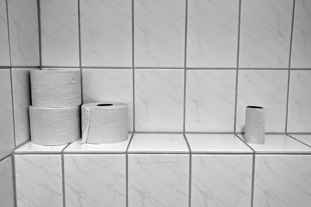 picture of toilet rolls in a toilet